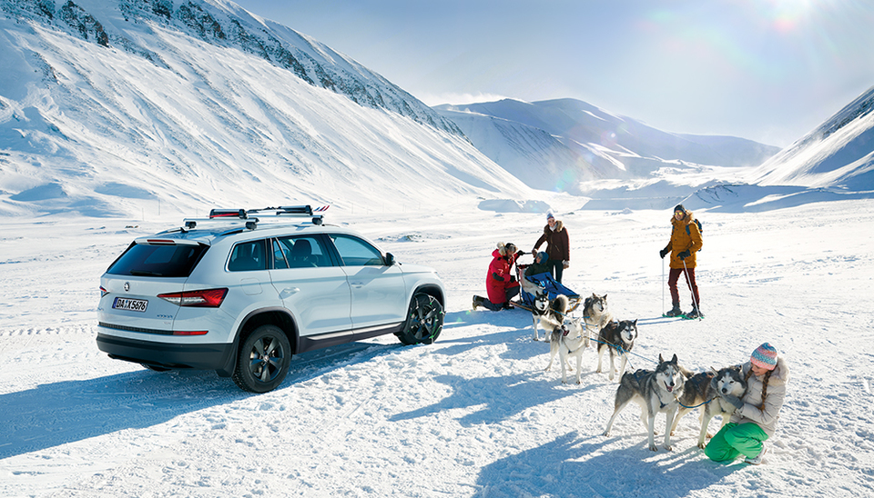 Skoda in Winterlandschaft